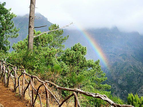 Natur erleben das ist Madeira - Portugal