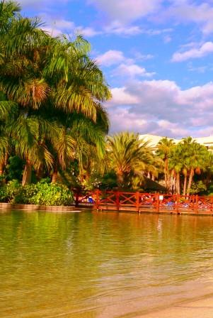 Strand, Palmen, Sandstrände das bekommen Sie bei Last Minute Reisen auf die Kanaren