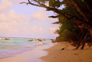 Sommer,Sonne, Strand - ab in den Urlaub mit Restplatzshop